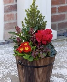 Say Christmas with Interflora