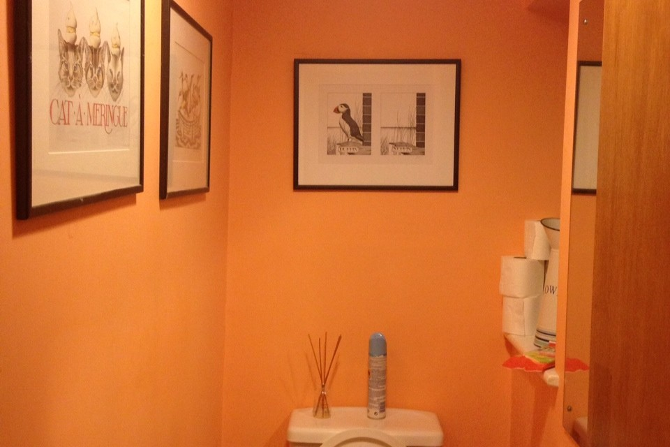 Room Makeover: Downstairs WC