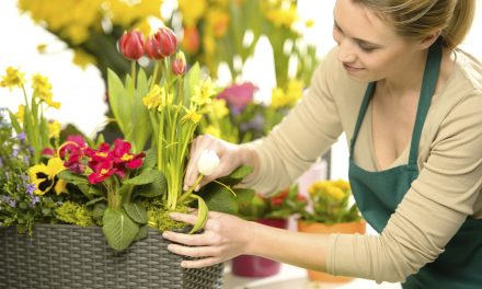 ​Top Tips to Help You Care for Flowers