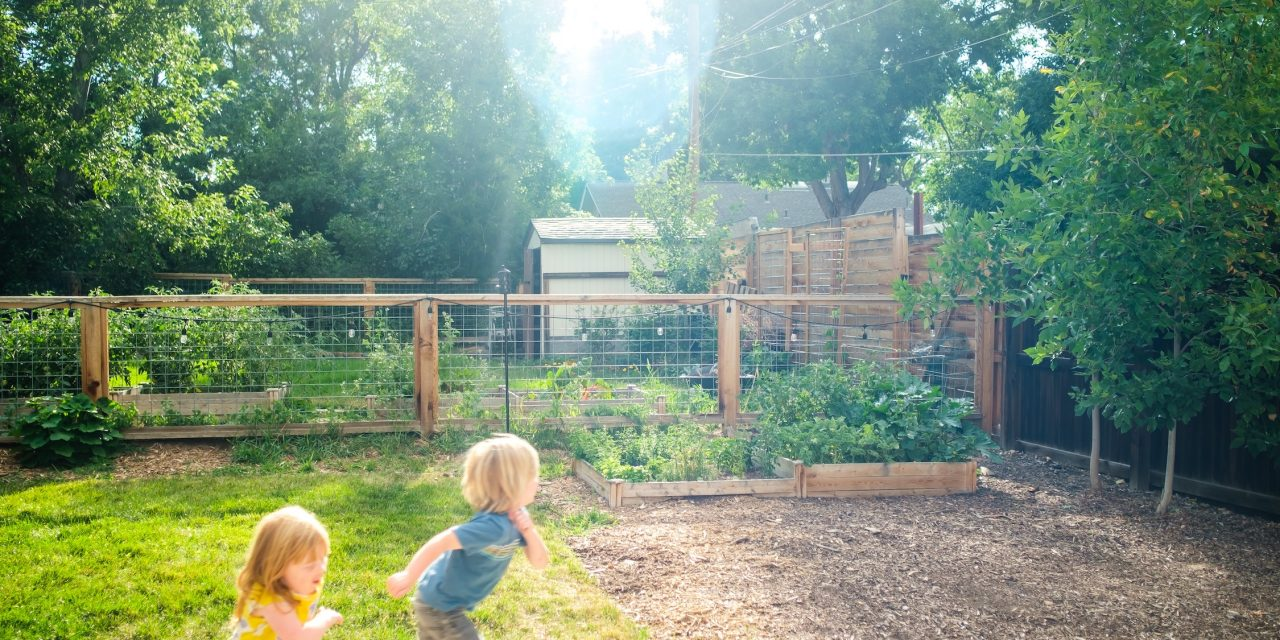 4 Steps to a Kid-Friendly Garden