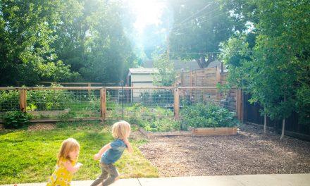 4 Steps to a Kid-Friendly Garden