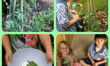 Fresh from our garden we ate peas