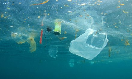 10 Tips For Living With Less Plastic