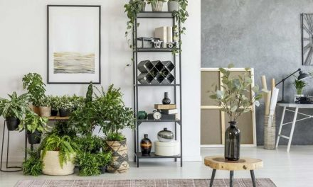 How To Transform Your Interiors Without Blowing The Budget